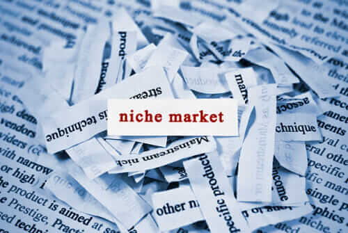niche market There is a lot of talk on small business websites about the importance of creating  your own niche so what is that all about.